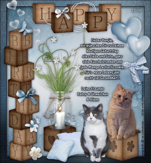 An den Beitrag angehängtes Bild: http://www.schuetzebiene.de/Diverses/Jan-12-01-19-Benjie-Birthday.jpg