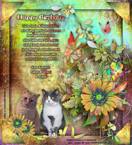 An den Beitrag angehängtes Bild: http://www.schuetzebiene.de/Diverses/mai-04-05-20-Bobby-Josie-MiauMio-Geburtstag.jpg