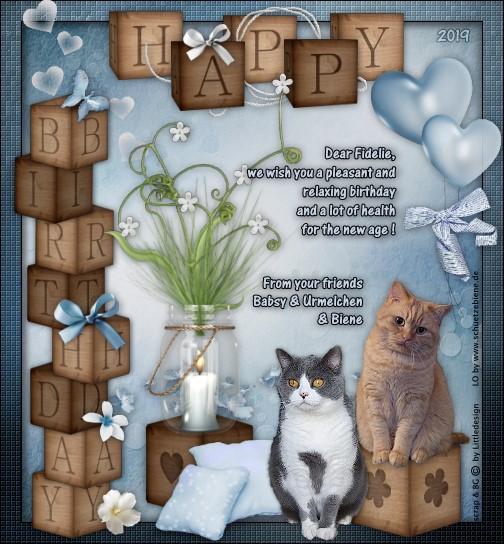 An den Beitrag angehängtes Bild: http://www.schuetzebiene.de/Diverses/okt-19-10-19-Fidelie-Gunilla-Cats-Birthday.jpg